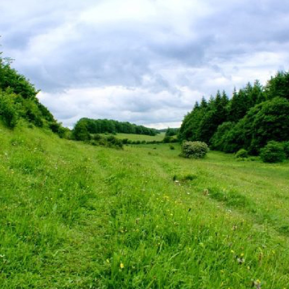 Views of Kent Downs | Things to do Dover